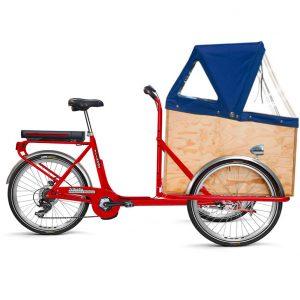 Trikego Elettrico con Cappottina, panchetta e sportellino frontale