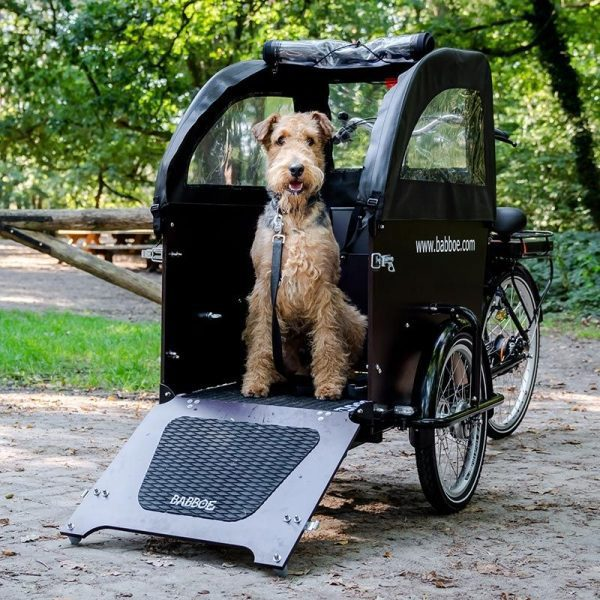 Babboe Dog – Copertura parapioggia