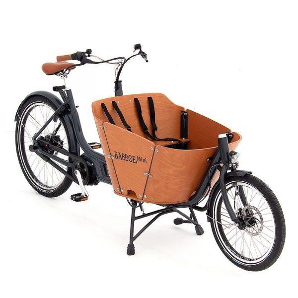 Babboe Mini Mountain - Modello 2 ruote compatta con motore potente per terreni collinari