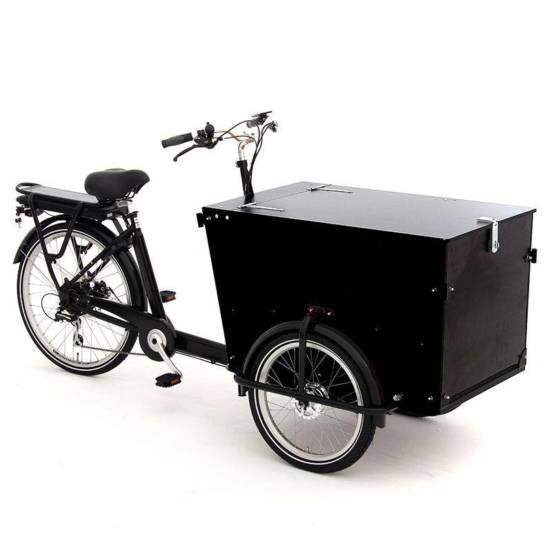 BABBOE PRO Trike-E 450Wh 265L